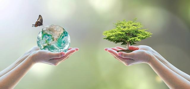 לא רק גרטה: 5 פעילים ידועים למען הסביבה.