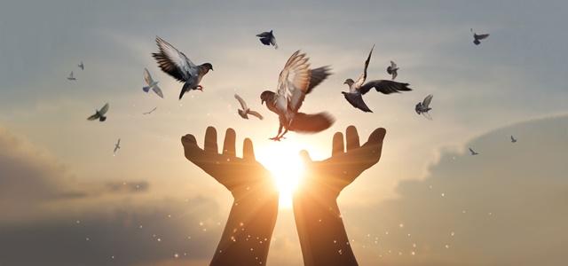 לזכרו של עמית: שירים מלאי תקווה לעולם טוב יותר. AdobeStock