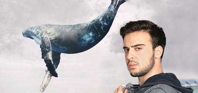 """מבולבלים? הסיפור המלא של """"הלוויתן הכחול"""". צילום מאינסטגרם"""
