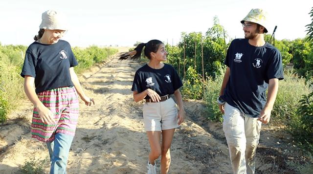חופש משמעותי: ביקרנו במחנה הקיץ הכי מיוחד שיש. פרוגי