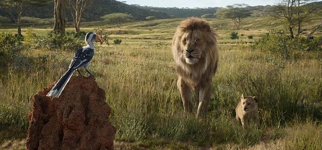 """חדשות הקולנוע: ליהוקים ל""""מלך האריות"""" החדש. Disney באדיבות yes"""